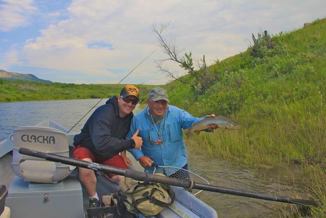 Brown Trout - Waterton River Alberta