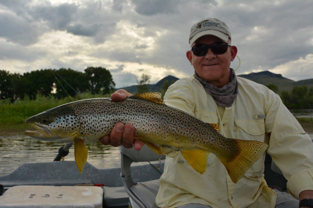 Missouri River MT Brown Trout