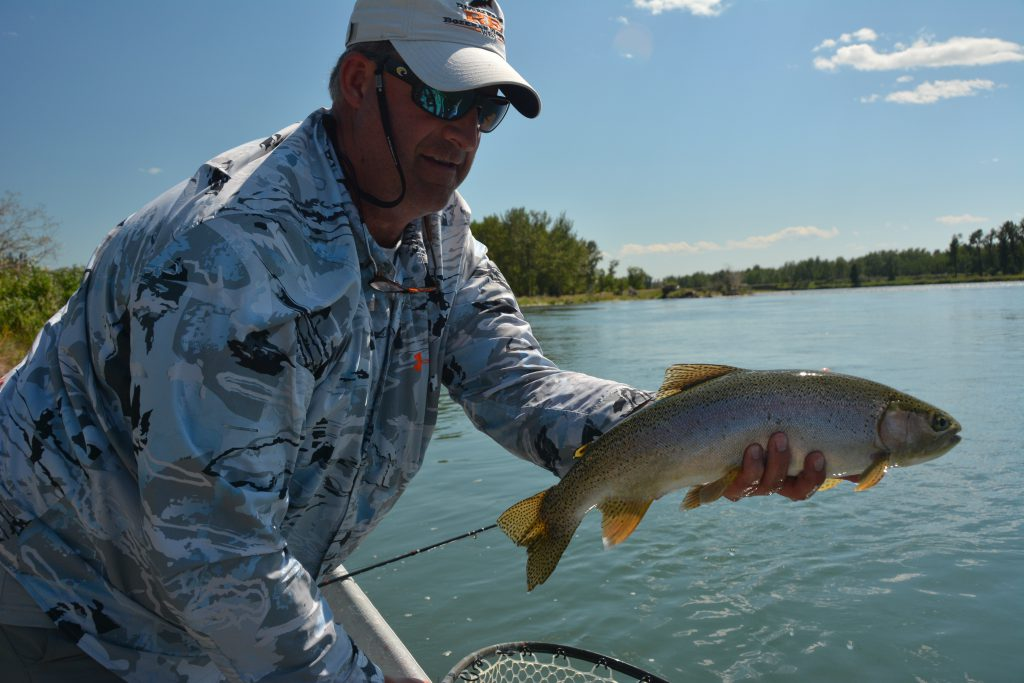 Bow River Rainbow Trout