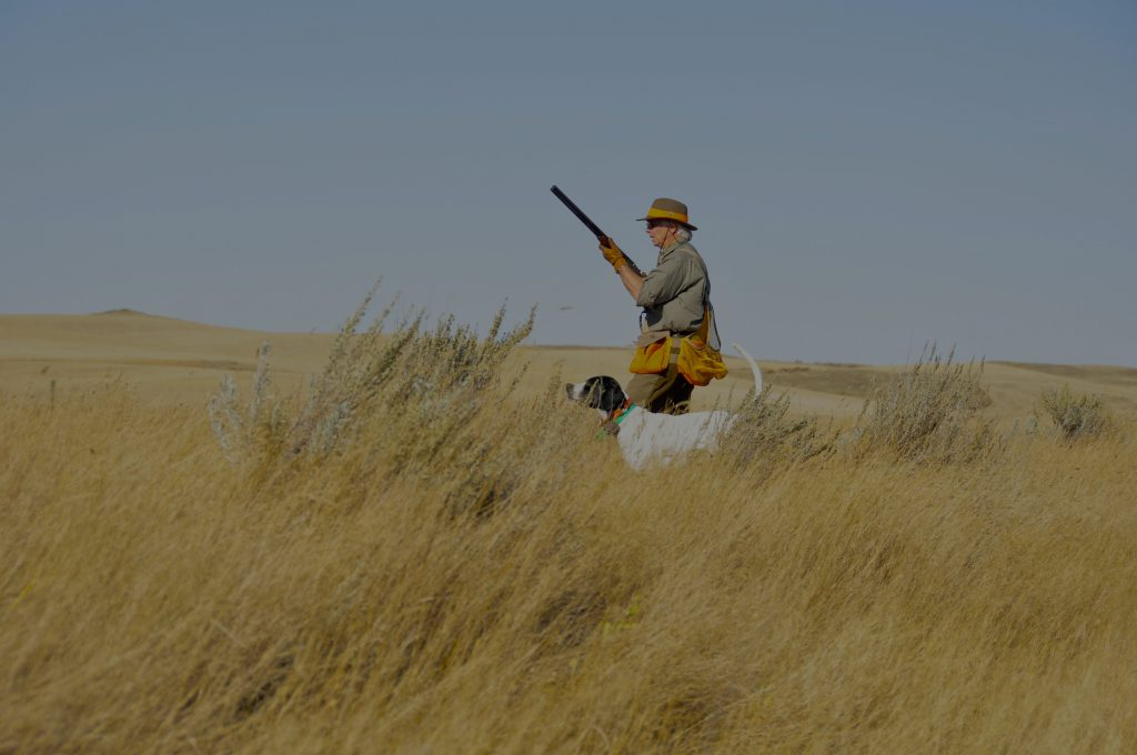 Saskatchewan Upland Bird Hunting