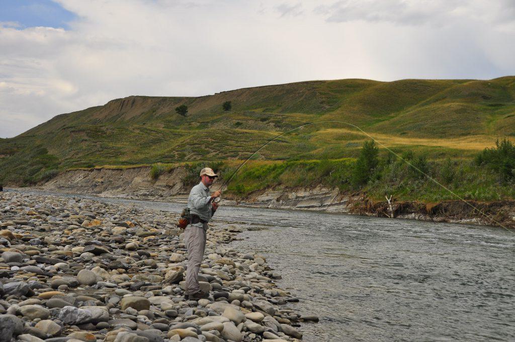 Fly-Fishing The Oldman River in Alberta