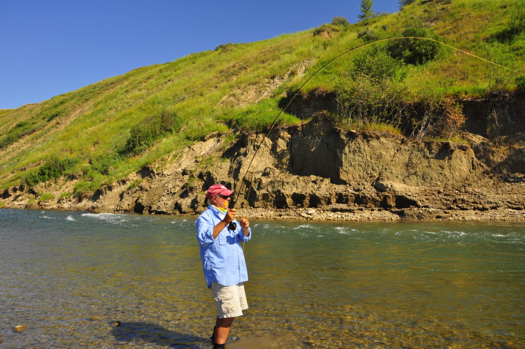 Fly fishing the elk river fernie british columbia for Fly fishing outfitters