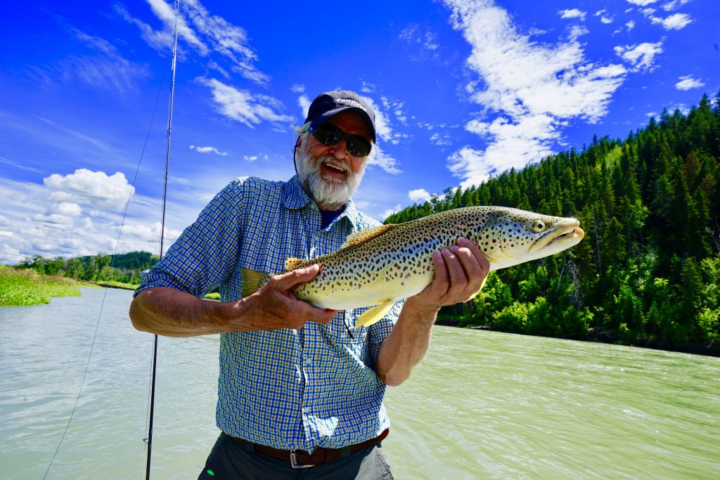 BrownTrout caught in Alberta's Bow River