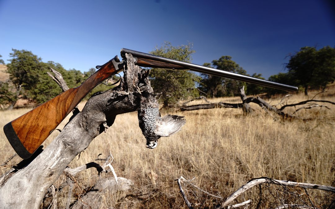 Best Chokes for Arizona Quail Hunting