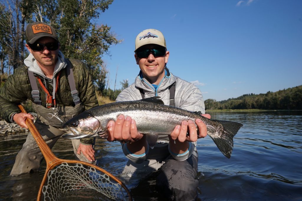 a bow river fly-fishing guide holds a net for a client who caught a large bow river rainbow trout