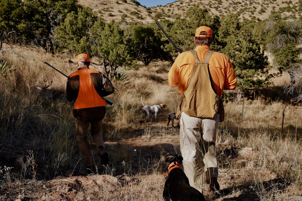 two hunters move in to cover a point in arizona