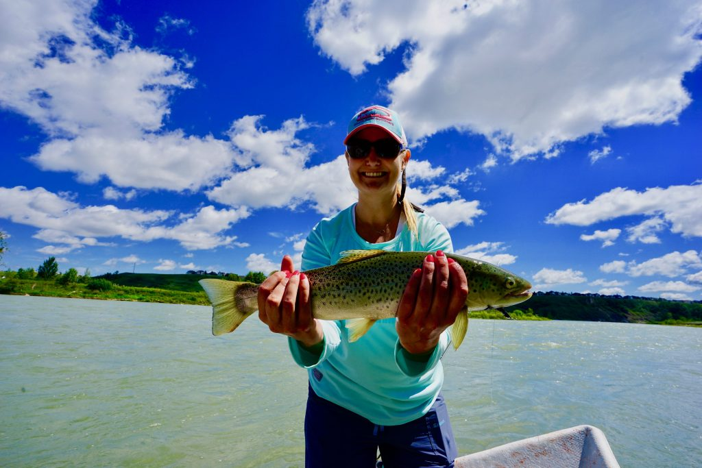 A first  Time Bow River Fly-Fishing Client with a Bow River Brown trout