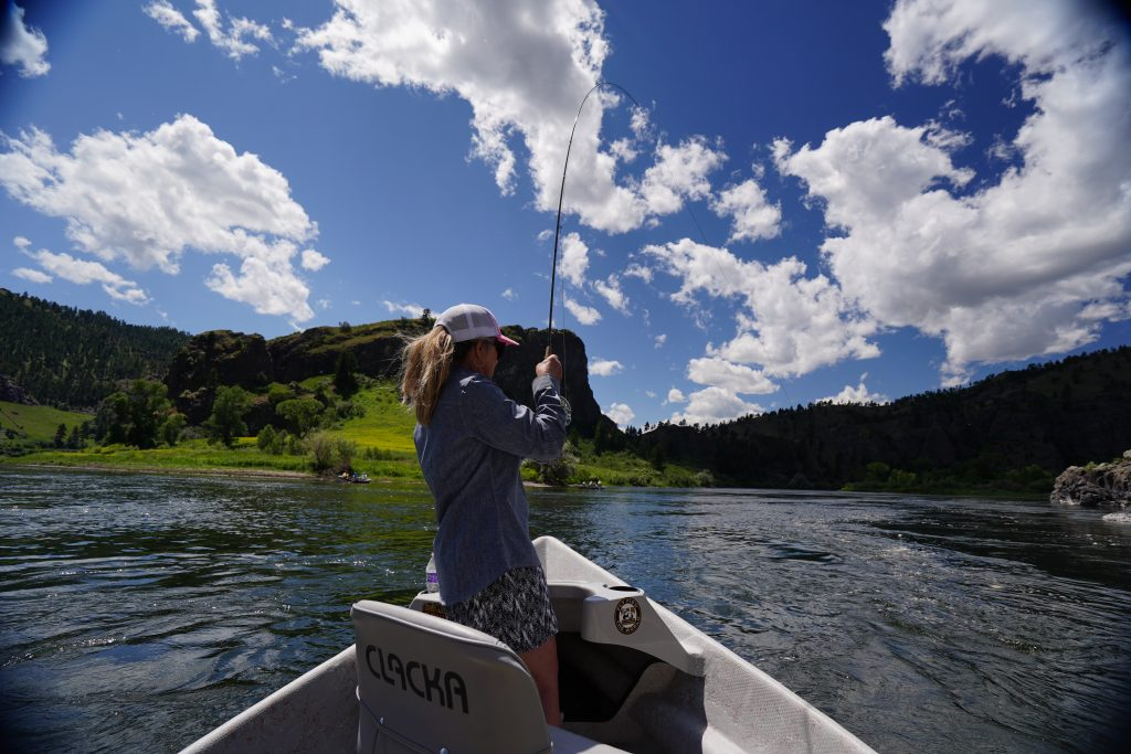 guided fly-fishing trip on the missouri river in montana