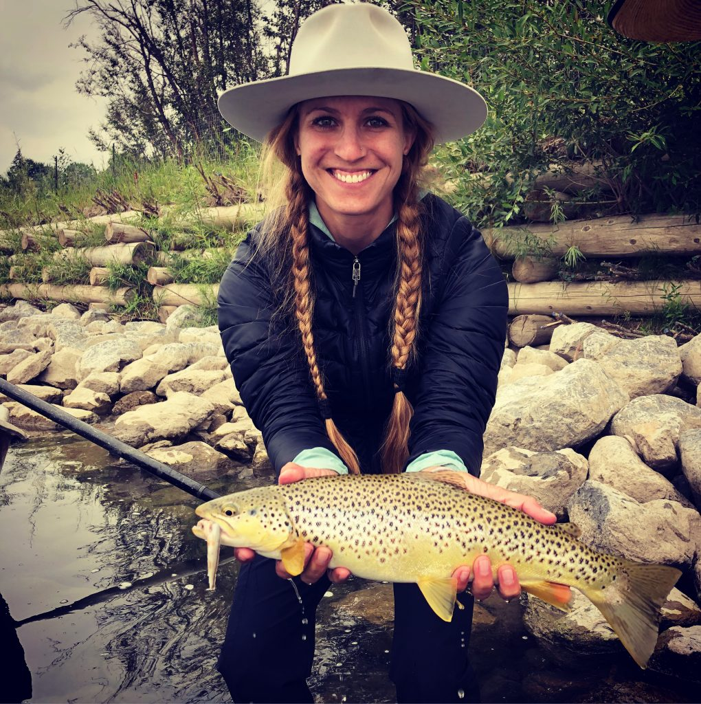 Brown Trout from Alberta's Bow River
