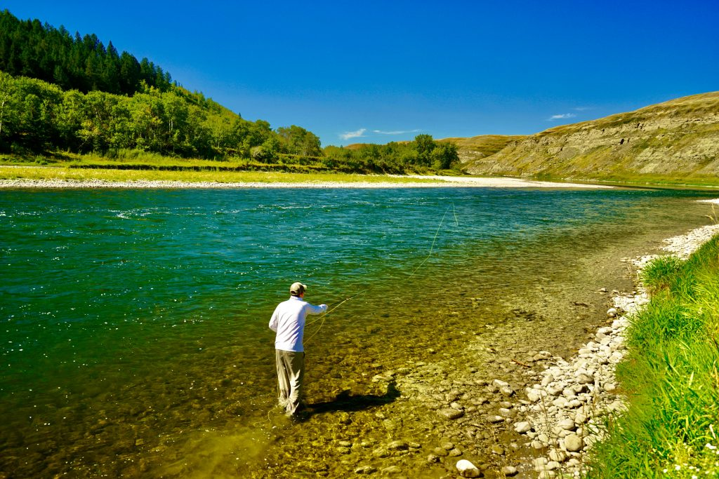 Bow River Fly-Fishing