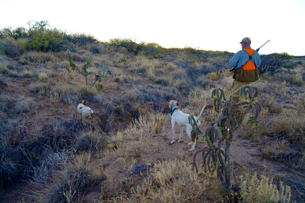 A Hunter covers a point in Arizona
