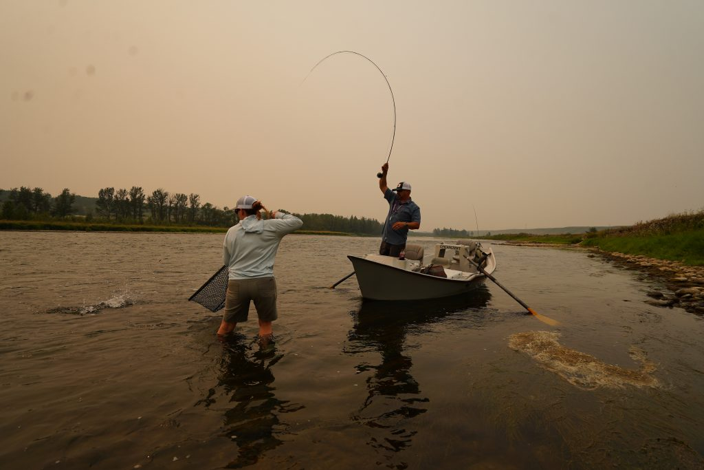 Netting a fish on The bow River